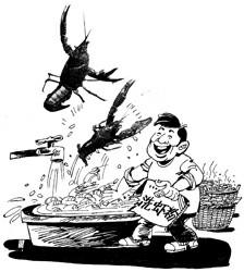 受伤的小龙虾产业