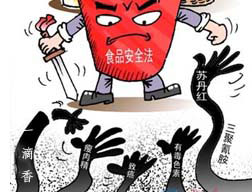 """中国食品安全问题是个""""定时炸弹"""""""